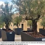 Rapport développement durable de la ville d'Aix